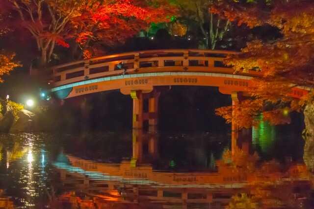 daigoji 醍醐寺 紅葉