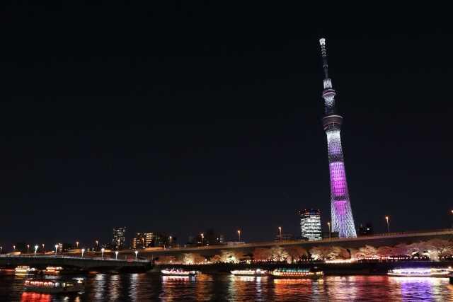 wisatadi東京スカイツリー