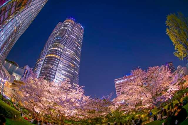 wisata di Tokyo Roppongi Hills