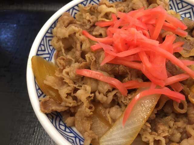 Gyudon Wasyoku makanan jepang