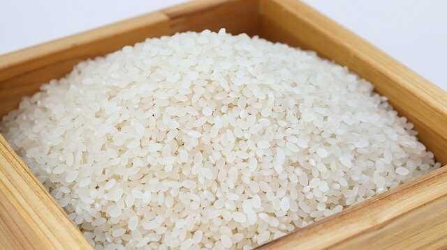 cara membuat onigiri penting pilih beras